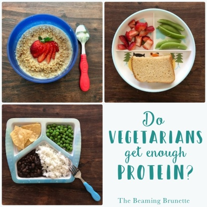 How much protein do vegetarians get? thebeamingbrunette.com